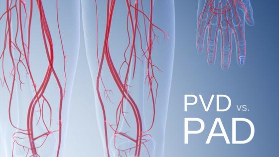 PVDvs.PAD